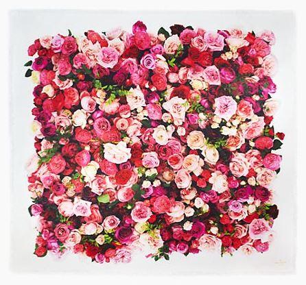 kate spade rose print scarf